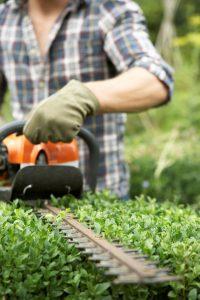 tuinwerkzaamheden dordrecht